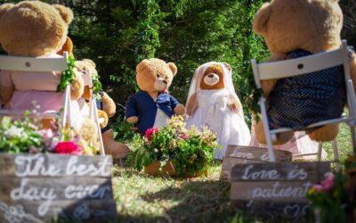 Vjenčanje plišanih medvjedića Ursule i Bernia